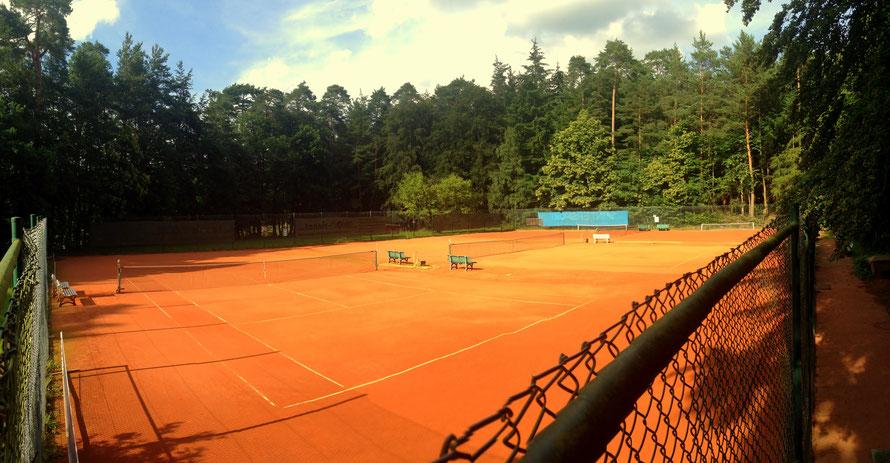 Tennis Sulzbach