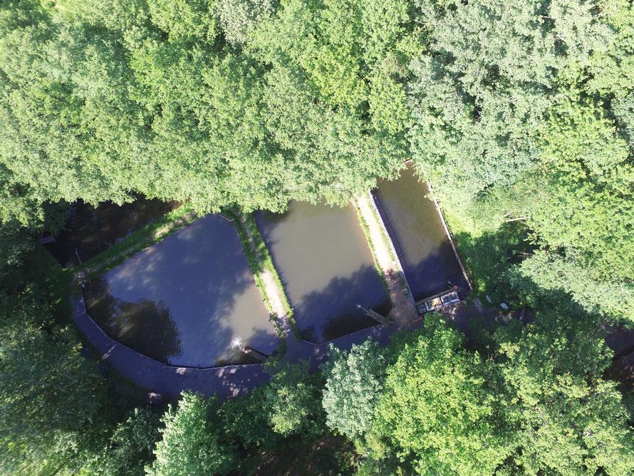 Luftbildaufnahme / Draufsicht