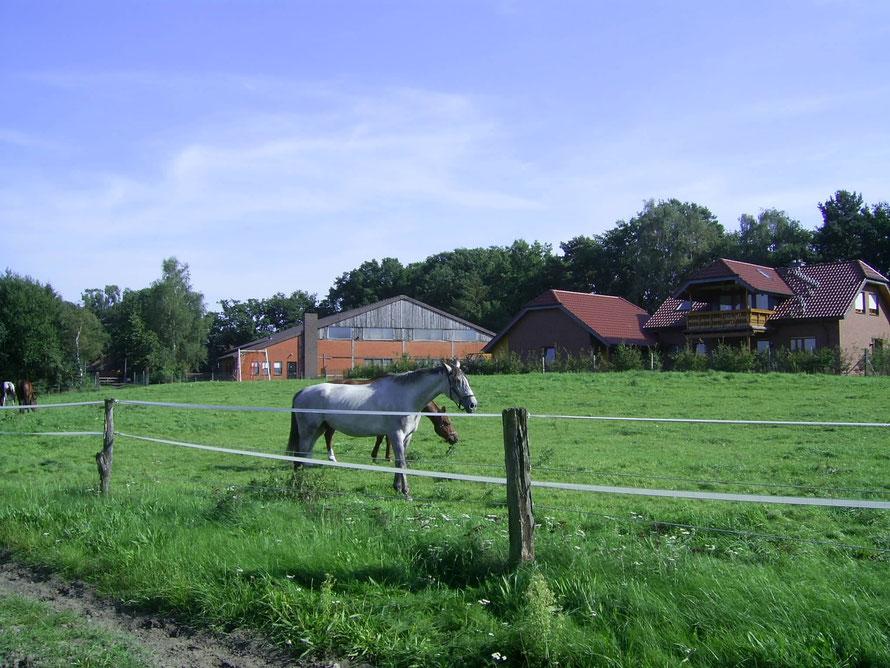 Reiterhof Hachmann (von uns aus 300m)