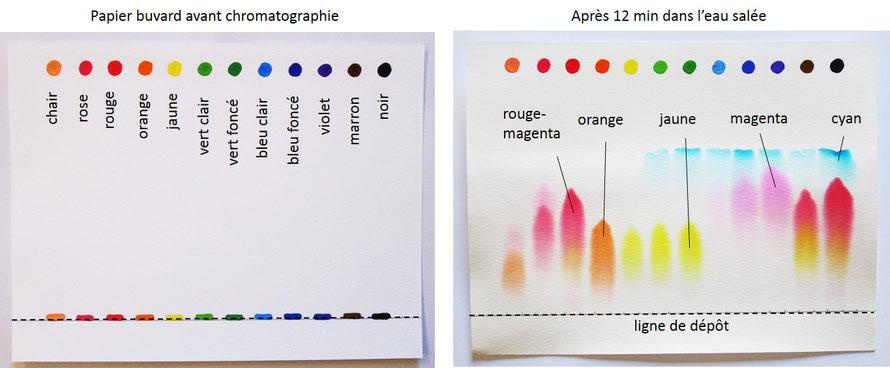 Chromatographie sur du papier buvard