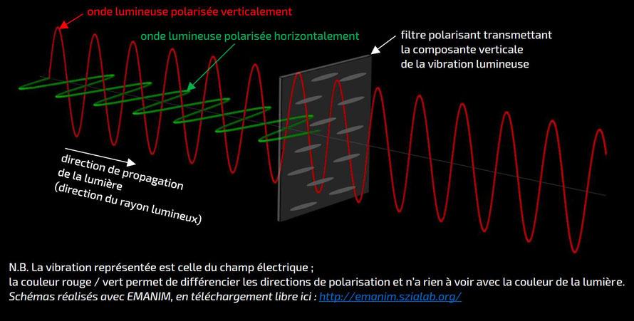 principe d'un filtre polarisant type polaroïd