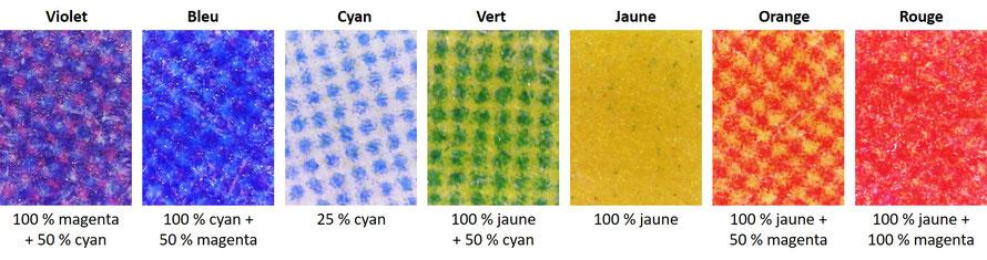 Les secteurs colorés du disque de Newton vus au microscope numérique
