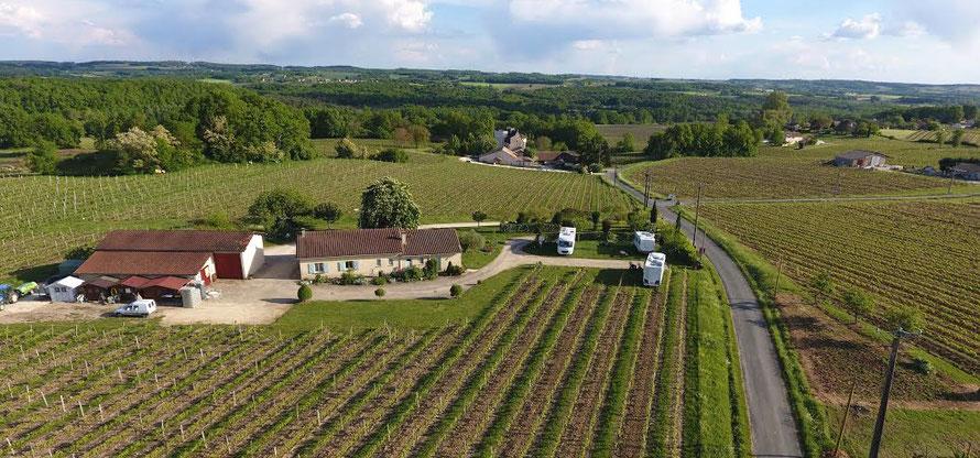 château haut pezaud, monbazillac, vin
