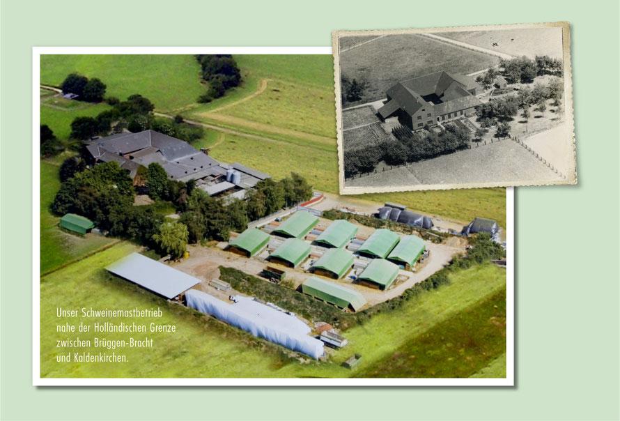 Der Pötterhof um 1900 und heute