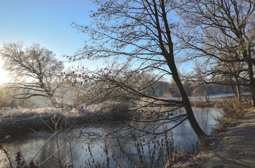 Winter am Ellernsee in Rastede