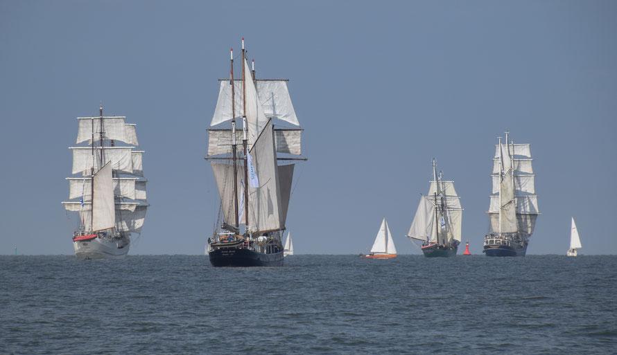 Die Jade Sail 2016. Ein Genuss, diese schönen Schiffe zu begleiten.