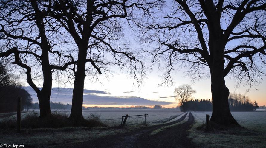 Sonnenaufgang bei Frost in Bokel