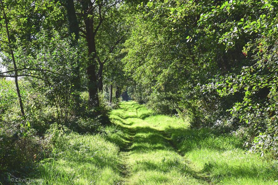 Ein Weg der Ruhe, ich habe es genossen :-))