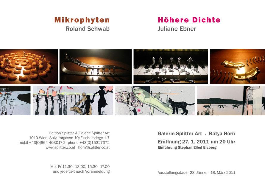 Höhere Dichte - Juliane Ebner