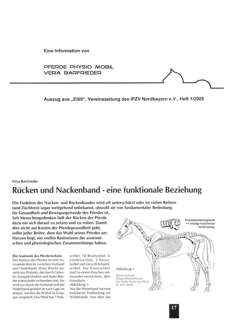 Niedlich Pferd Nackenmuskulatur Anatomie Ideen - Menschliche ...