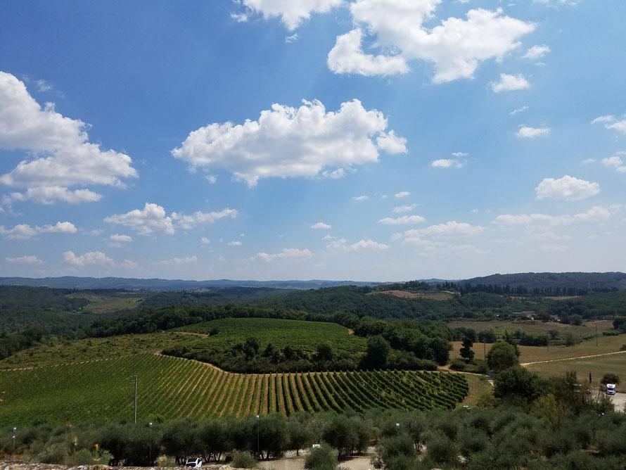 Ausblick von der Stadtmauer Monteriggionis über die Weinberge des Chianti und Wälder der Sieneser Montangnola