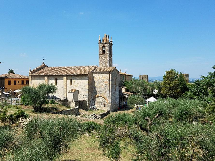 Dorfkirche von Monteriggioni zwischen Olivenbäumen