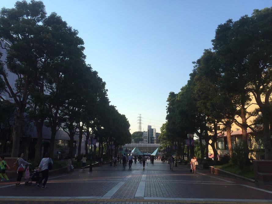 Way to Keio & Odakyu Tama Center station from Hello Kitty Street Tokyo Tama city shopping tourist spot TAMA Tourism Promotion - Visit Tama ハローキティストリートから京王・小田急多摩センター駅への道 東京都多摩市  ショッピング 観光スポット 多摩観光振興会