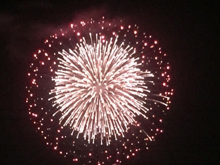Tachikawa festival Showakinen Park Fireworks event Tokyo Tachikawa & Akishima TAMA Tourism Promotion - Visit Tama 立川まつり国営昭和記念公園花火大会 東京都立川市 昭島市 多摩観光振興会