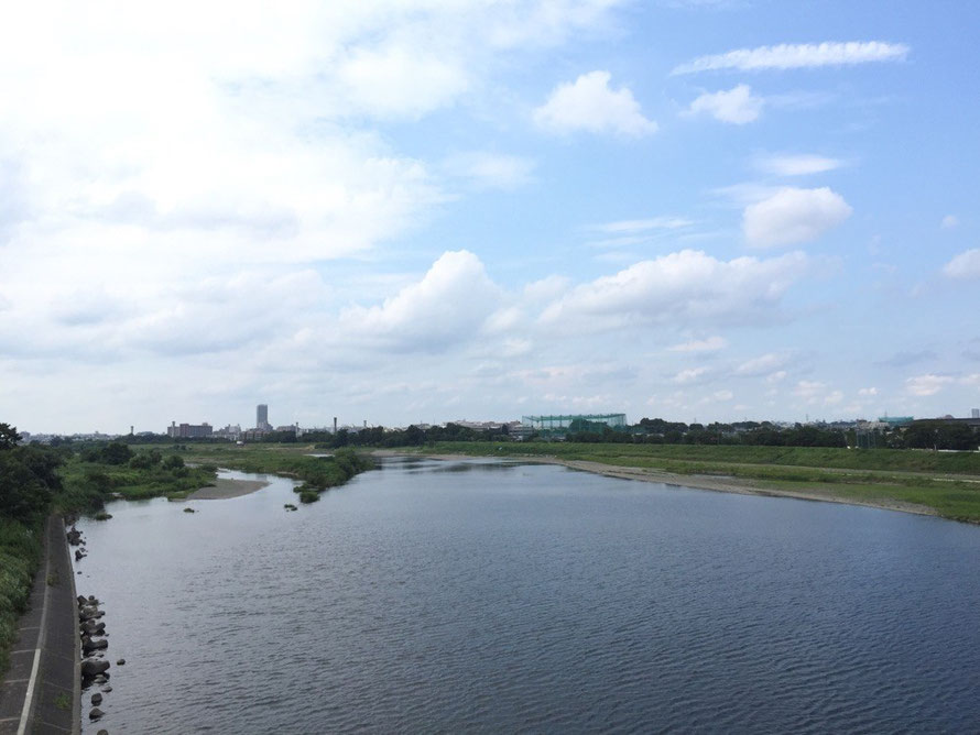 Tama River from Tama River Water pipe Bridge Tokyo Komae nature walking TAMA Tourism Promotion - Visit Tama 多摩川水道橋 世田谷通り 東京都狛江市 自然 散策 多摩観光振興会