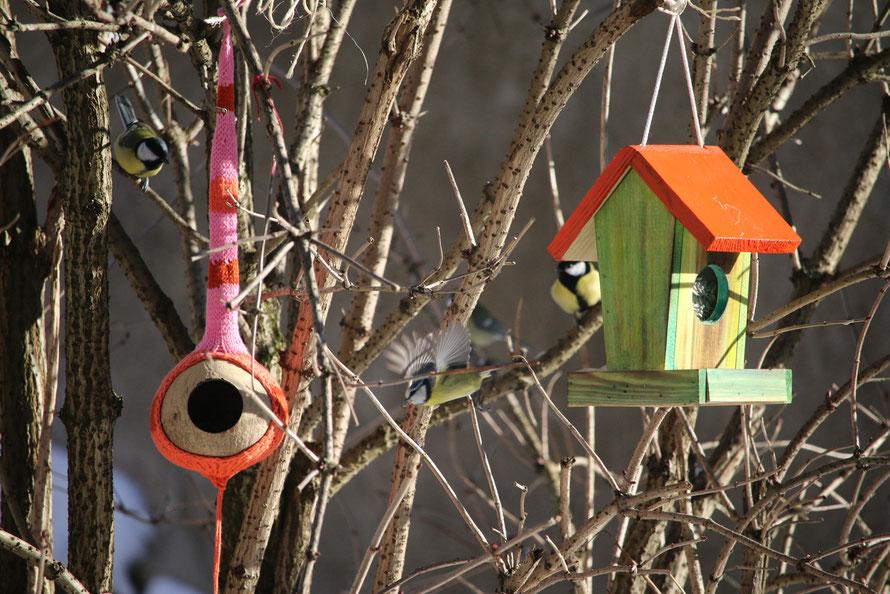 4 busy birds