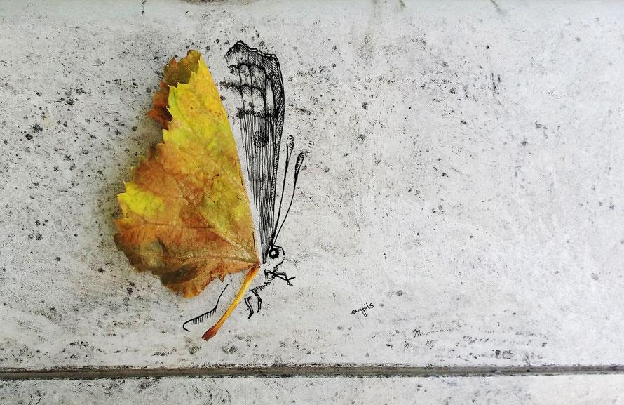 illustration seeing things series © evapils