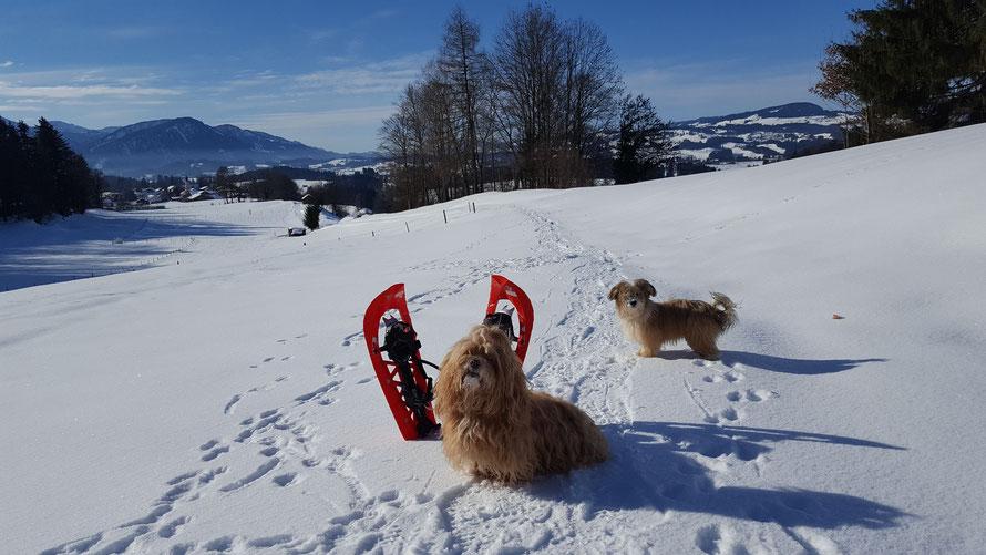 Schneeschuhwandern macht Spaß