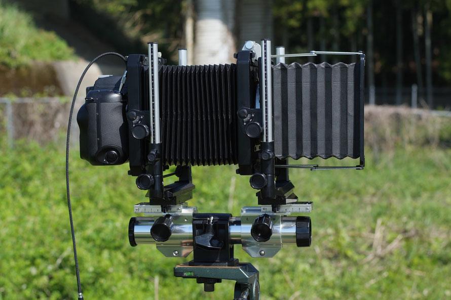FinePix S3Pro AF-S Nikkor 50mm f/1.8G