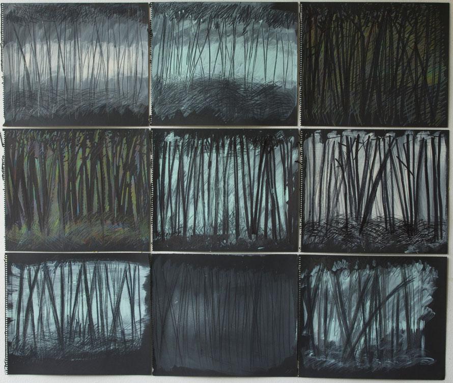 the ocean is near  /   les landes / france summer 2013    crayon  coal  pencil  gouache  on black cardboard     25 x 29 cm ( each )