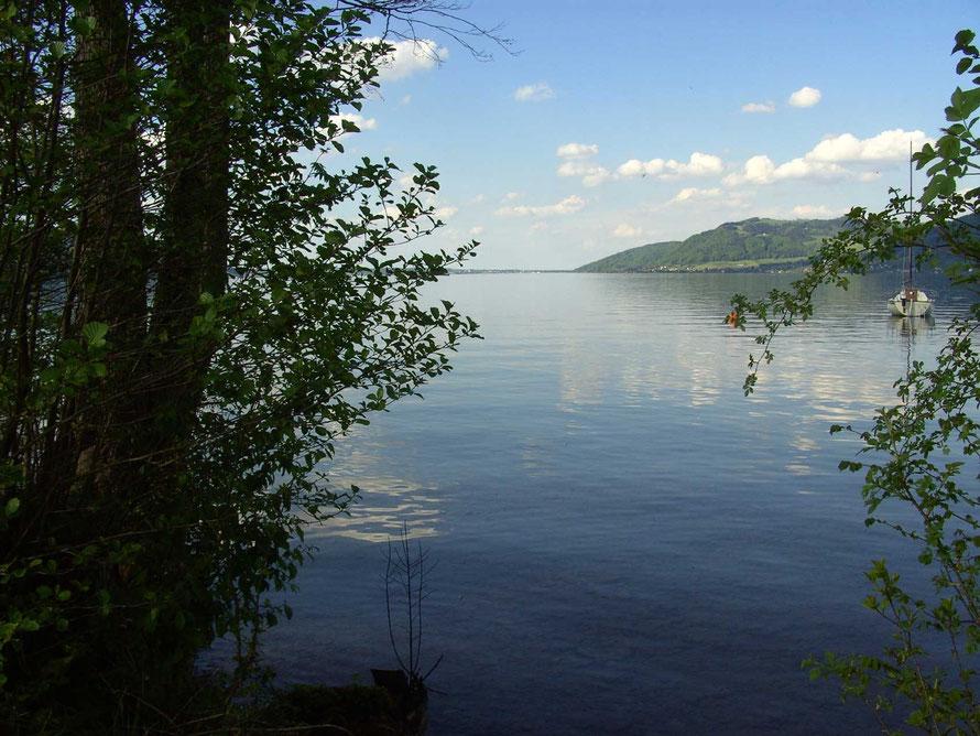 Stiller Weitblick am See