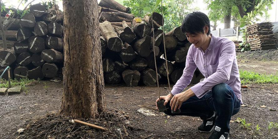 アンドウッド 無垢フローリング 植林 インドネシア