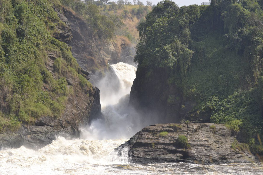 Murchison_ Falls_ National _Park