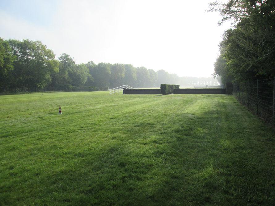Centre d'entrainement pour chevaux de course à Maisons-Laffitte
