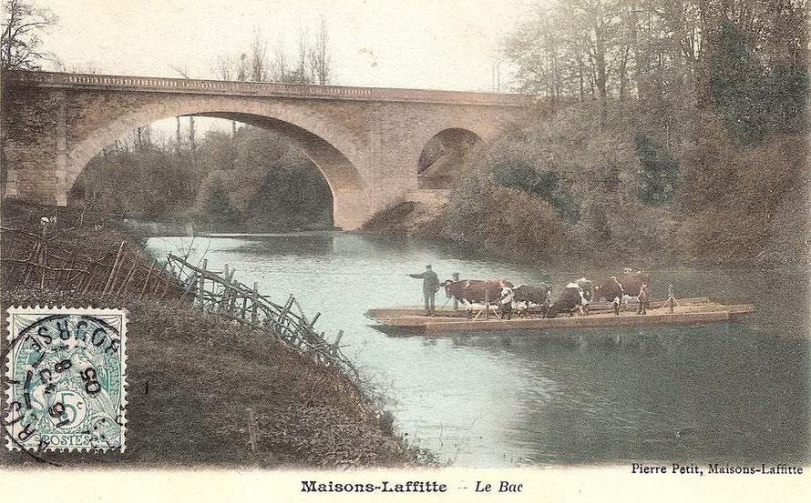 Maisons-Laffitte le bac avec des vaches en 1906