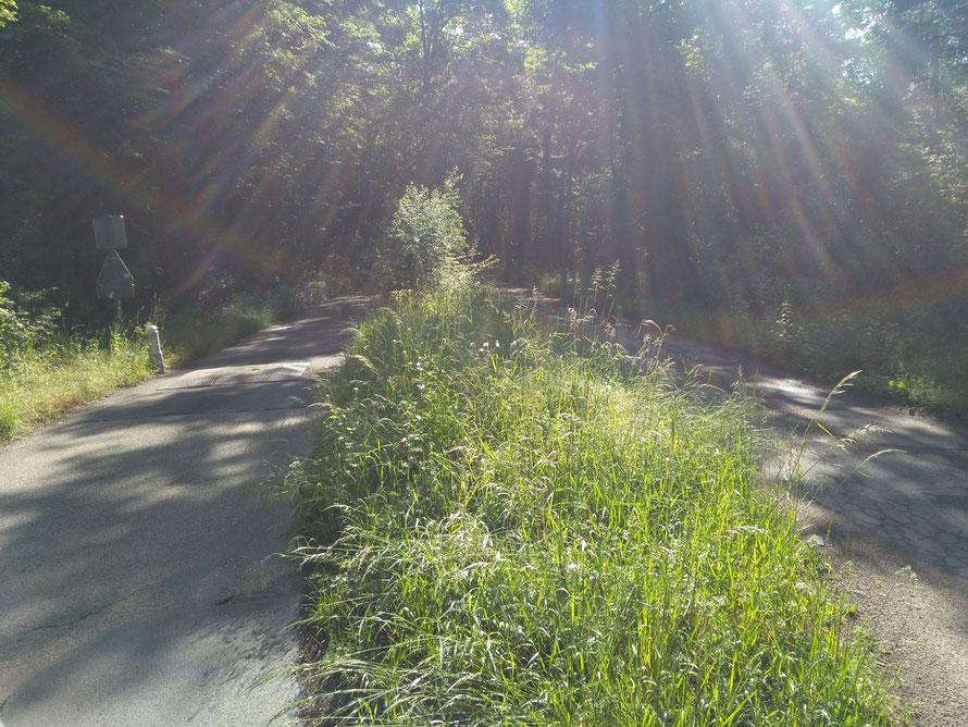 Route du bout du monde à l'emplacement de l'ancienne voie ferrée