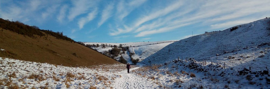 Gratton Dale and Long Dale guided walk