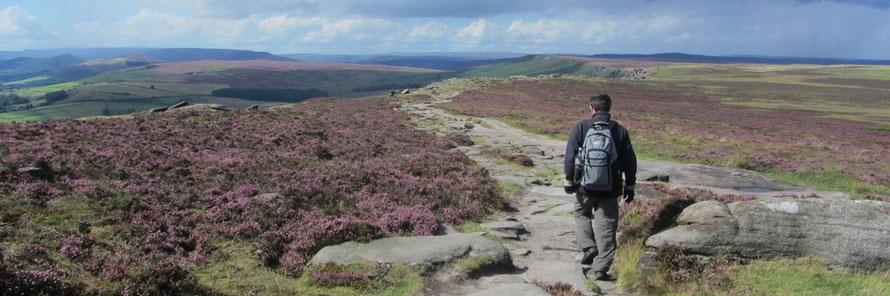 The Dark Peak Challenge walk.  Section on Stanage Edge