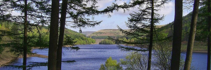 Hills around Derwent Reservoir, guided walk