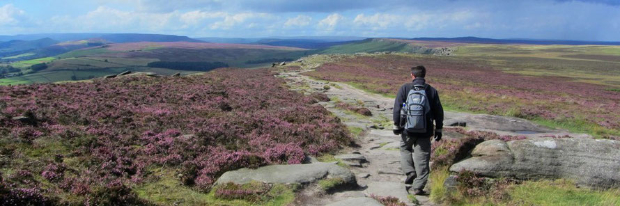 Heather walk. Stanage Edge