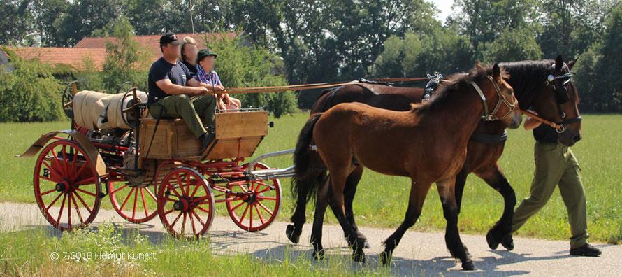Pferdegespann aus dem Nachbarort Geinberg