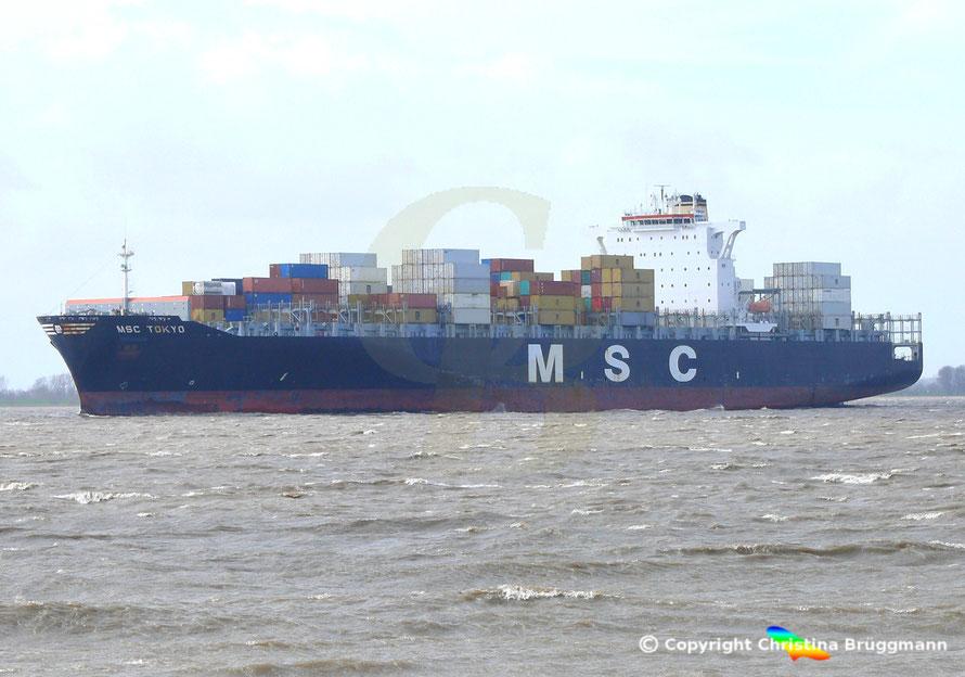 """""""MSC TOKYO"""" auf der Elbe 01.04.2015"""