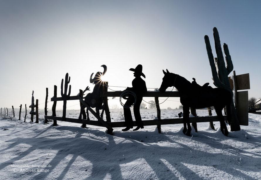Flower-Horse-Ranch im Schnee
