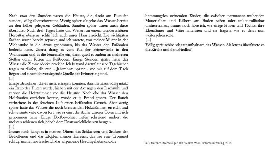 Gerhard Streminger Die Fremde