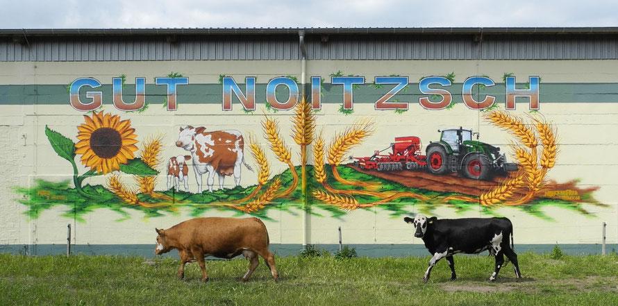 PAT23 - Fassaden Gestaltung Leipzig - Krostitz - Notizsch mit Hauseigener Kuh & Traktor