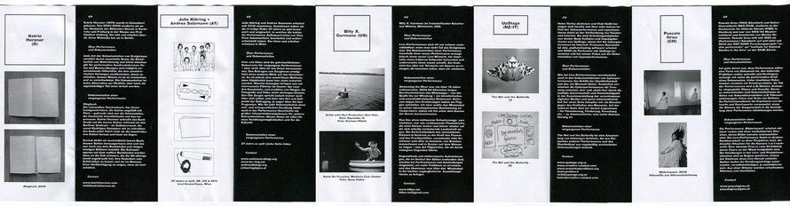 Abendprogramm, Beiträge der einzelnen KünstlerInnen: Vita, Dokumentation einer Arbeit, Statements zu Performance und Dokumentation