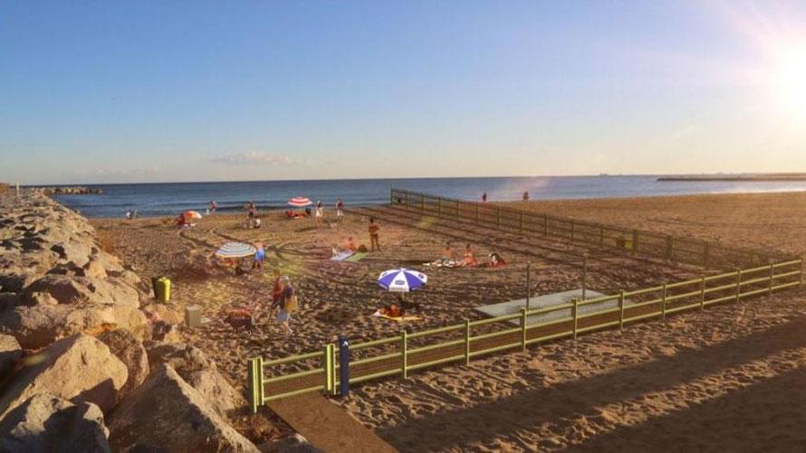 perros en la playa, noticias barcelona, perros chihuahua barcelona, perros yorky, perros pequeños playa,