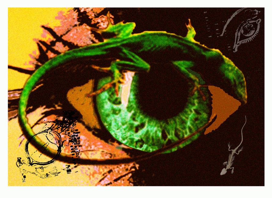 L'œil du lézard