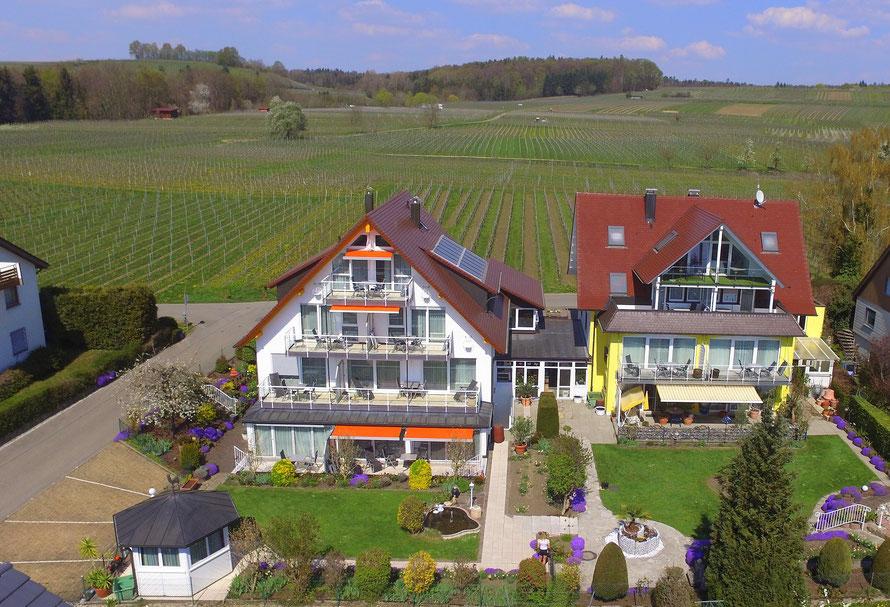 Bild: Ferienwohnungen im Haus Annette und Haus Melanie in Hagnau mit Seeblick am Bodensee