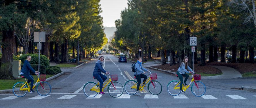 Da der Komplex so groß ist, hat Google überall Fahrräder (Das Motiv kommt euch vielleicht auch bekannt vor :D  )