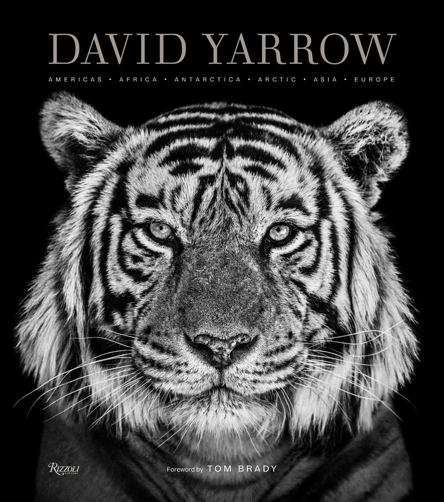 © David Yarrow von David Yarrow, Rizzoli New York, 2019