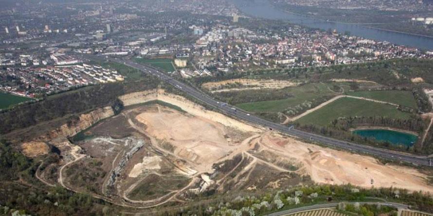 Die im ehemaligen Laubenheimer Bruch geplante Bauschutt-Deponie könnte das politische Aufreger-Thema des Herbstes werden. Foto: Alfons Rath