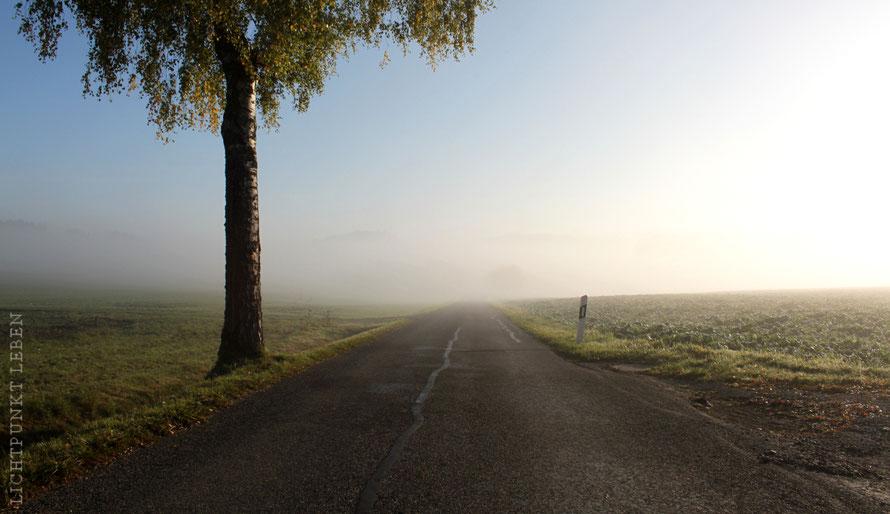 Autostrasse als Symbol für die Lebensreise, den Lebensweg, Lichtpunkt Leben Blog Pannenhilfe