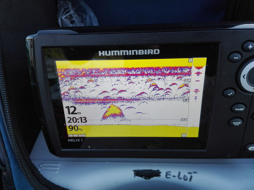 Humminbird Helix 5 im Einsatz