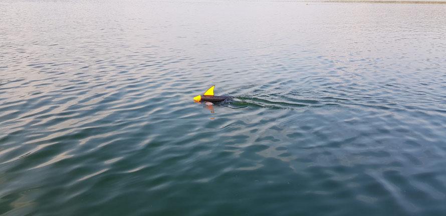 Der Topla2 im Wasser. Das Laufverhalten ist auch bei Wind und Welle sehr gut. Er bleibt auch bei höheren Geschwindigkeiten stabil und hält in Kurven sehr gut seine Position. Die Sichtbarkeit ist überragend!