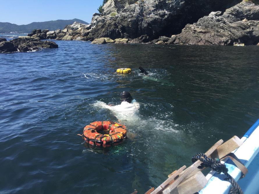 唐突にこの夏ブログに書きそびれた海女漁の写真を出してみる。